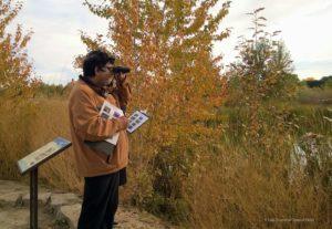 Qaiser birding